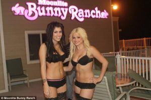 Sin City-Bunny Ranch
